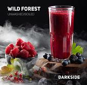 Dark Side Wild Forest