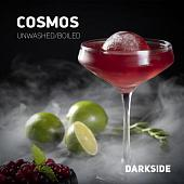 Dark Side Cosmos